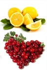 Морс клюква - лимон