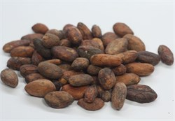 Какао-бобы цельные (Колумбия), Tumaco, обжаренные, 50г - фото 8915